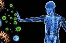 Как поднять иммунитет взрослому в домашних условиях