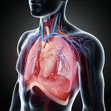 По дыханию будут диагностировать тяжелые заболевания