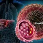 Вирусный гепатит А: современные особенности клиники, диагностики и профилактики
