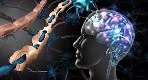 Одобрен препарат компании Janssen для лечения рецидивирующего рассеянного склероза